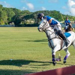 Regatta Polo Match